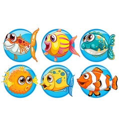 Different kinds of fish on round badge vector