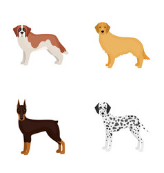dobermandog domestic and other web icon in vector image