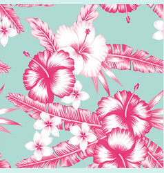 hibiscus and leaves vector image