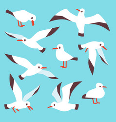 Cartoon atlantic seabird seagulls flying in blue vector