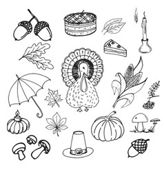 Collection of elements for thanksgiving day vector
