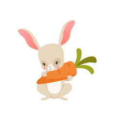 Cute cartoon bunny nolding carrot funny rabbit vector