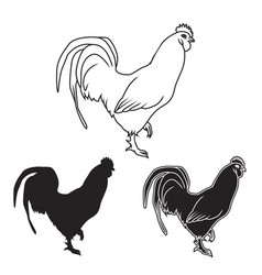hand drawn chicken set vector image