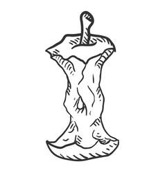 Sketch apple core vector