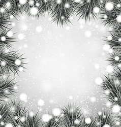Silver christmas background with spruce branches vector image