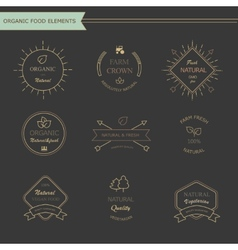 Set of vintage style elements for labels and vector image