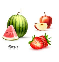 watermelon apple strawberry fruit slice set vector image