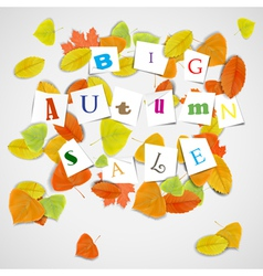 Big autumn sale with colorful leaves vector image