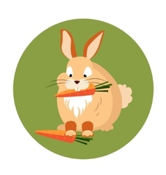 Cute Rabbit Eating a Carrot vector image