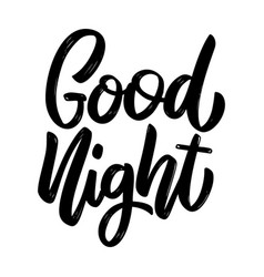 good night lettering phrase on white background vector image