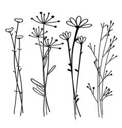 hand drawn botanical set doodle floral element vector image