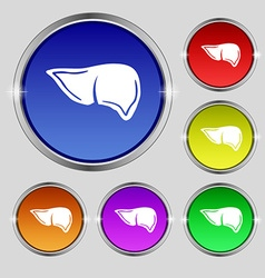 Liver icon sign Round symbol on bright colourful vector image