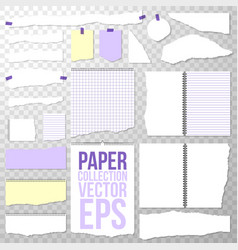 paper collection different torn pieces shapes and vector image
