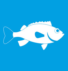Sea bass fish icon white vector