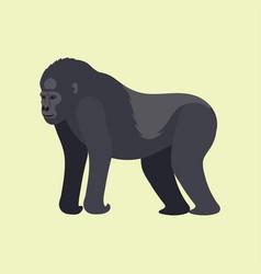 gorila monkey rare animal cartoon macaque vector image