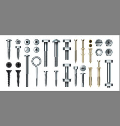 Bolt and screw realistic metal fasteners with vector