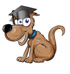 dog mascot character with graduation cap hat vector image