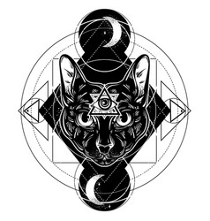 Hand drawn cat all seeing eye vector