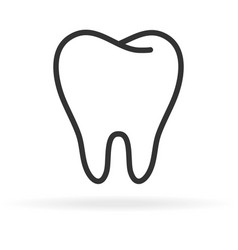 Human tooth stomatology icon in trendy thin line vector