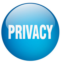Privacy blue round gel isolated push button vector