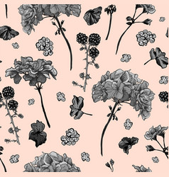 floral seamless pattern with blooming geraniums vector image vector image