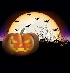Pumpkins in the night vector