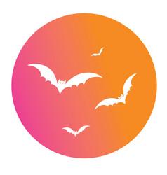 Colorful gradient halloween design element bat vector