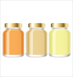 Glass Jars with honey Mockup vector image