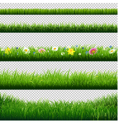 Grass borders set transparent background vector