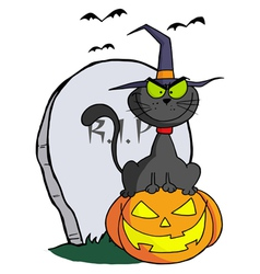 Halloween Cat on Pumpkin Near Tombstone vector image