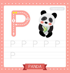 Letter p uppercase tracing practice worksheet of vector
