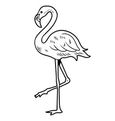 simple line drawing sketch flamingo vector image