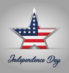 Usa independence day design vector
