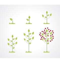Growing tree icon set vector image