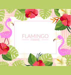 Flamingo banner template with cute tropical exotic vector
