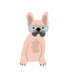 funny french bulldog in glasses print perfect vector image