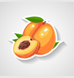 peach sticker cartoon sticker vector image
