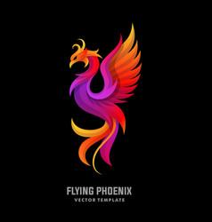 phoenix concept designs template vector image