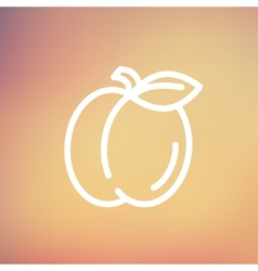 Plum with leaf thin line icon vector image