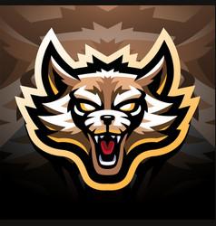 Raccoon head esport mascot logo vector