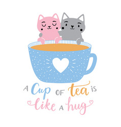 with pink and grey couple cats tea cup vector image