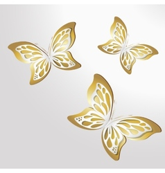 Paper Lace butterfly on gold background vector image vector image