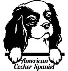 american cocker spaniel peeking dog - head vector image
