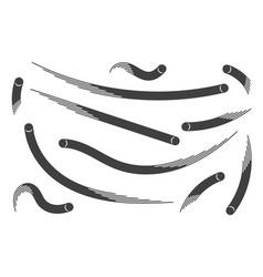 balls sport brush template isolated on white vector image