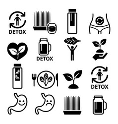 Detox body cleaning with juices vegetables vector