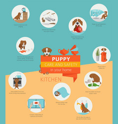 Puppy care and safety in your home kitchen pet vector