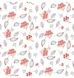 Rowan and leaves seamless white pattern vector image