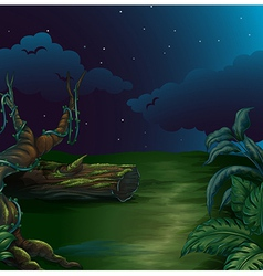 A beautiful landscape in a dark night vector image vector image