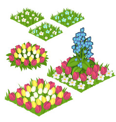 several unusually beautiful flower lawns vector image vector image