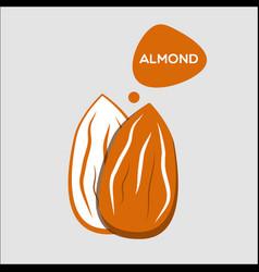 Almond nut icon vector
